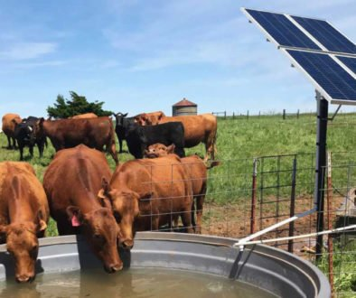 solar powered water pump for cattle Unique ks14 1500 gpd k255r2