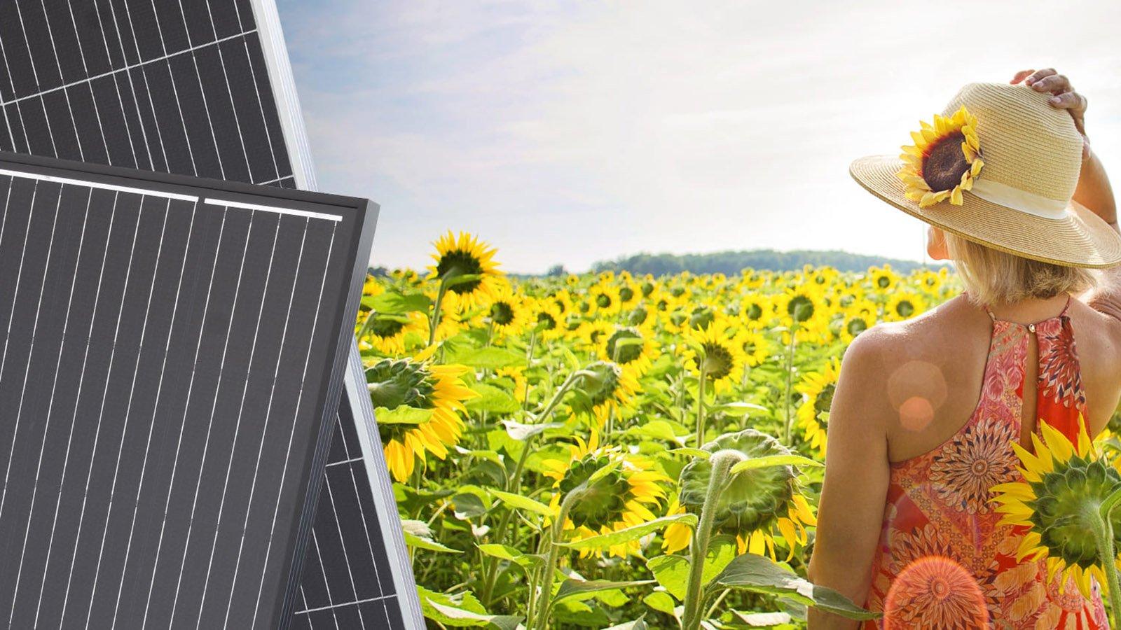 158.75mm PERC Mono Solar Panel